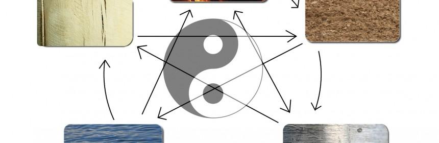 Personlighetsutveckling sett utifrån Traditionell Kinesisk Medicin